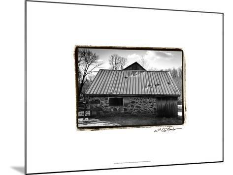 Barn Windows III-Laura Denardo-Mounted Art Print