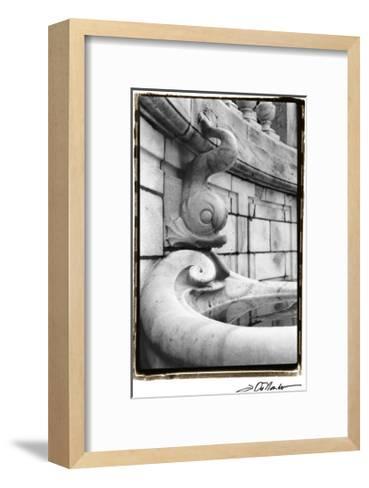 Fountain Fishes-Laura Denardo-Framed Art Print