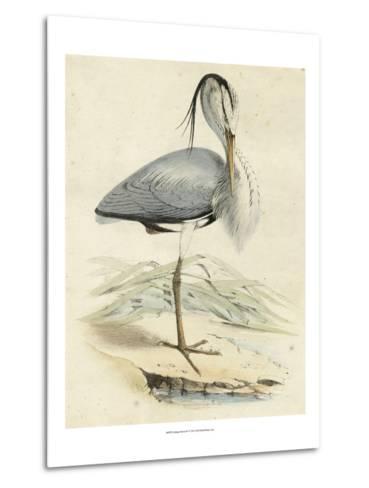 Antique Heron IV--Metal Print