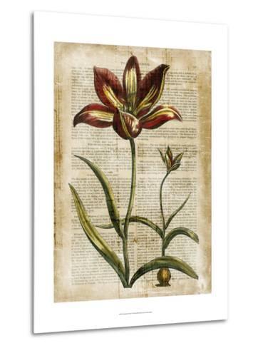 Antiquarian Tulips I--Metal Print