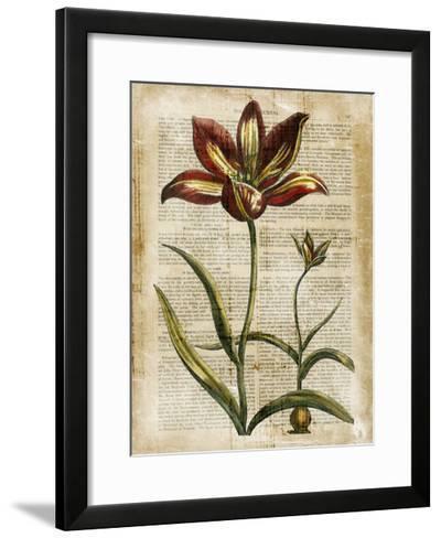 Antiquarian Tulips I--Framed Art Print