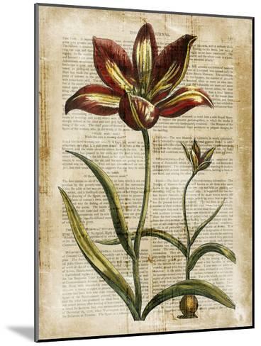 Antiquarian Tulips I--Mounted Art Print