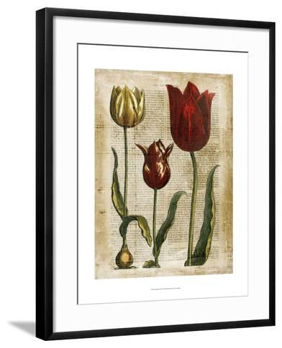 Antiquarian Tulips II--Framed Art Print