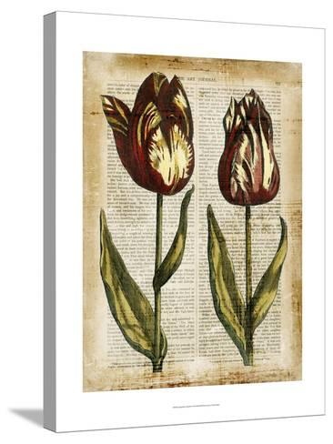 Antiquarian Tulips III--Stretched Canvas Print