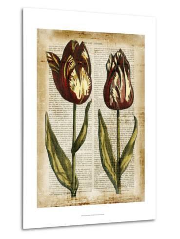 Antiquarian Tulips III--Metal Print
