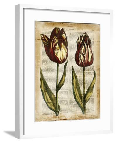 Antiquarian Tulips III--Framed Art Print