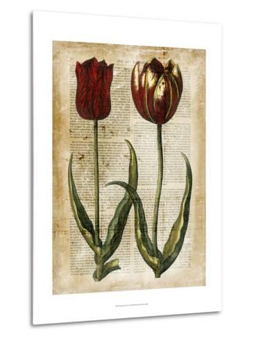 Antiquarian Tulips IV--Metal Print