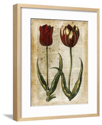 Antiquarian Tulips IV--Framed Art Print