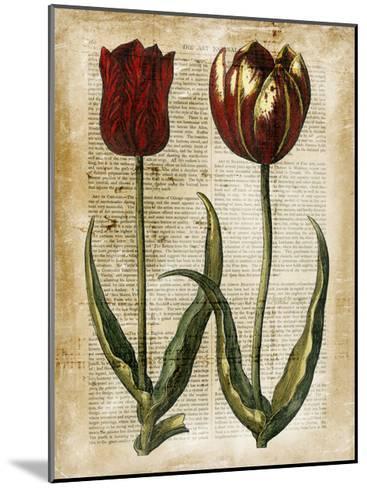 Antiquarian Tulips IV--Mounted Art Print