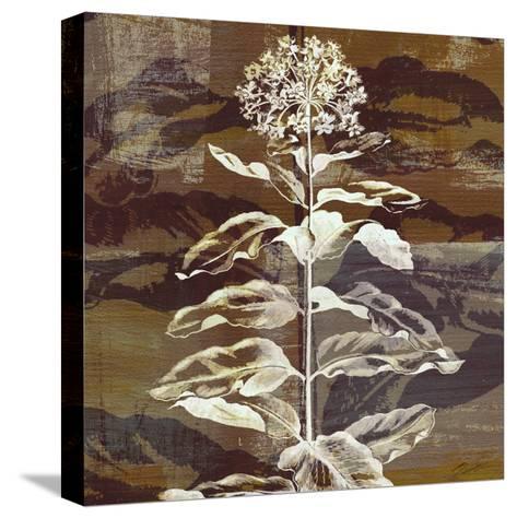 Prairie Mix VI-John Butler-Stretched Canvas Print