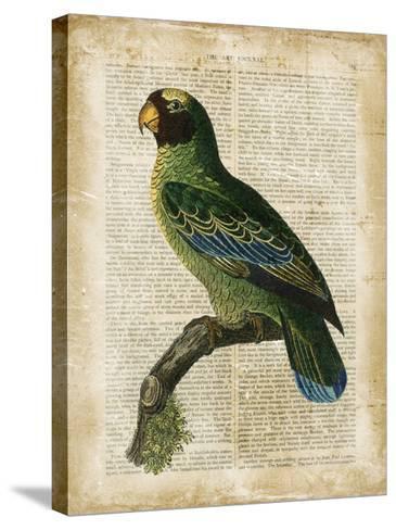 Antiquarian Birds VI--Stretched Canvas Print