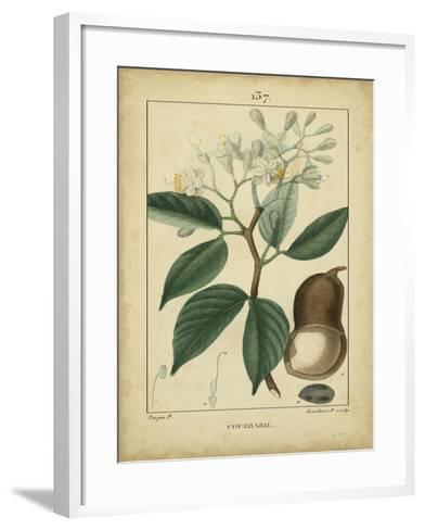 Vintage Turpin Botanical I-Turpin-Framed Art Print