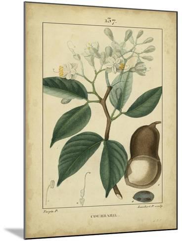 Vintage Turpin Botanical I-Turpin-Mounted Art Print