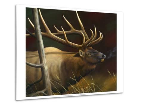 Elk Portrait II-Leo Stans-Metal Print