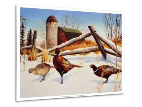 Pheasants II-Leo Stans-Metal Print