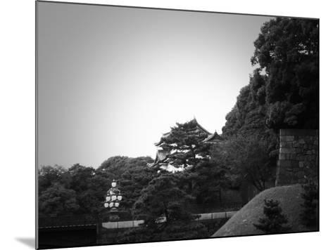 Tokyo Imperial Palace-NaxArt-Mounted Art Print