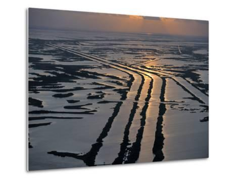 Canals Hold Pipelines That Deliver Oil and Gas From Offshore Wells-Joel Sartore-Metal Print