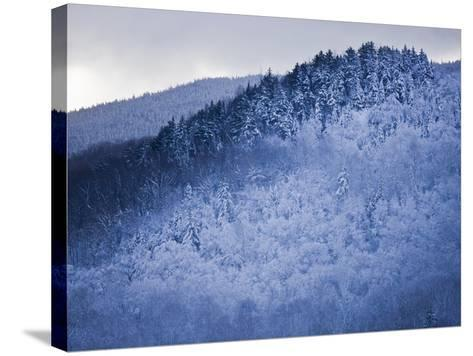 Winter Snow Whitens Mount Van Hoevenberg-Michael Melford-Stretched Canvas Print