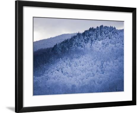 Winter Snow Whitens Mount Van Hoevenberg-Michael Melford-Framed Art Print