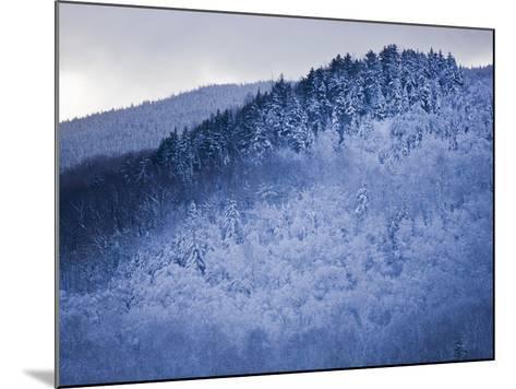 Winter Snow Whitens Mount Van Hoevenberg-Michael Melford-Mounted Photographic Print