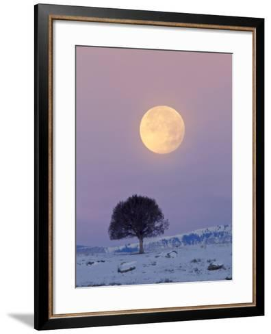 A Full Moon Rising over a Single Tree on a Snowy Hill-Robbie George-Framed Art Print