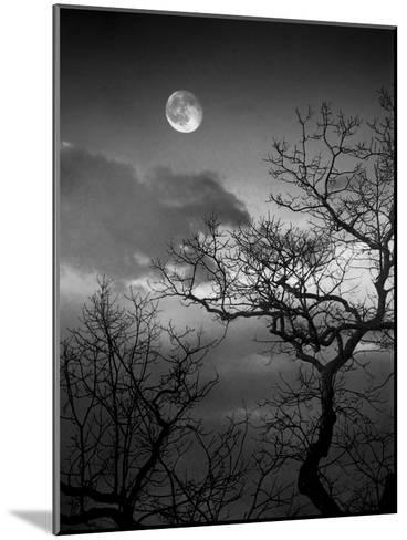 A Nearly Full Moon Sets over the Blue Ridge Mountains at Dawn-Amy & Al White & Petteway-Mounted Photographic Print