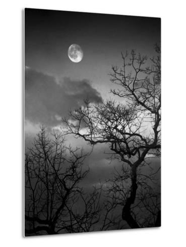 A Nearly Full Moon Sets over the Blue Ridge Mountains at Dawn-Amy & Al White & Petteway-Metal Print