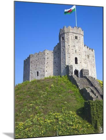Norman Keep, Cardiff Castle, Cardiff, South Wales, Wales, United Kingdom, Europe-Billy Stock-Mounted Photographic Print