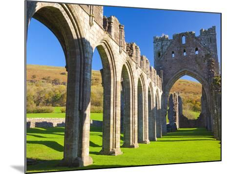Llanthony Priory, Brecon Beacons, Wales, United Kingdom, Europe-Billy Stock-Mounted Photographic Print