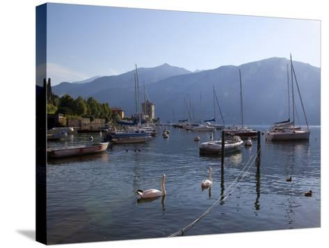 Boat Harbour and Lake, Bellagio, Lake Como, Lombardy, Italian Lakes, Italy, Europe-Frank Fell-Stretched Canvas Print