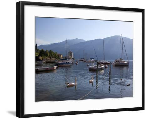 Boat Harbour and Lake, Bellagio, Lake Como, Lombardy, Italian Lakes, Italy, Europe-Frank Fell-Framed Art Print