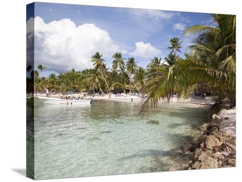 Saona Island, Dominican Republic, West Indies, Caribbean, Central America-Frank Fell-Stretched Canvas Print