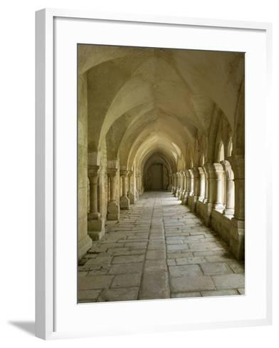 Cloisters, Fontenay Abbey, UNESCO World Heritage Site, Burgundy, France, Europe-Rolf Richardson-Framed Art Print