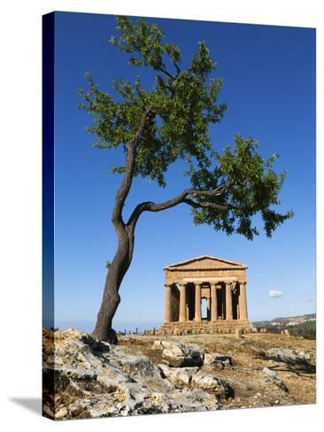 Tempio Di Concordia (Concord) and Almond Tree, Valle Dei Templi, UNESCO World Heritage Site, Agrige-Stuart Black-Stretched Canvas Print