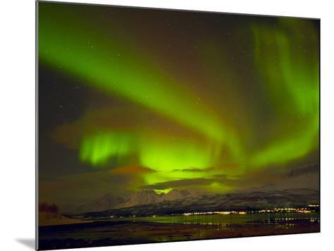 Aurora Borealis (Northern Lights) Seen over the Lyngen Alps, from Sjursnes, Ullsfjord, Troms, North-Neale Clark-Mounted Photographic Print