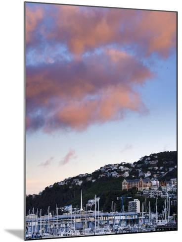 Wellington, North Island, New Zealand, Pacific-Michael Snell-Mounted Photographic Print