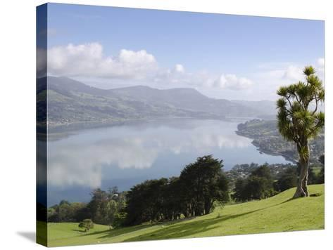 Otago Harbour, Otago Peninsula, Otago, South Island, New Zealand, Pacific-Michael Snell-Stretched Canvas Print