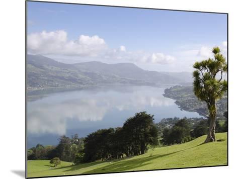 Otago Harbour, Otago Peninsula, Otago, South Island, New Zealand, Pacific-Michael Snell-Mounted Photographic Print