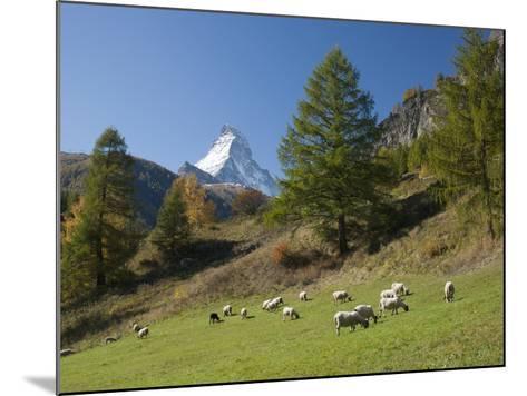 Zermatt, Valais, Swiss Alps, Switzerland, Europe-Angelo Cavalli-Mounted Photographic Print