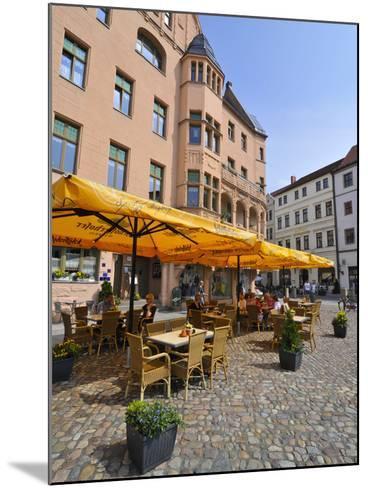 Wittenberg, UNESCO World Heritage Site, Saxony, Germany, Europe-Michael Runkel-Mounted Photographic Print