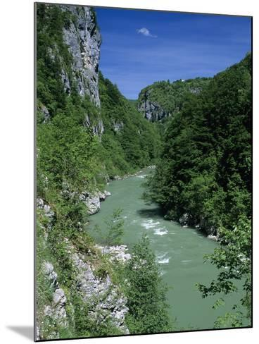Tara Canyon and Tara River, Tramontana, Montenegro, Europe-Stuart Black-Mounted Photographic Print