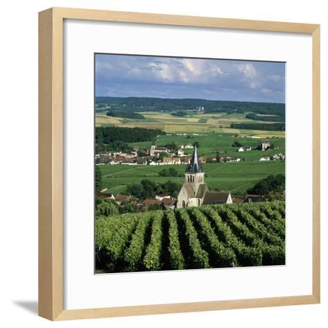 Champagne Vineyards, Ville-Dommange, Near Reims, Champagne, France, Europe-Stuart Black-Framed Art Print