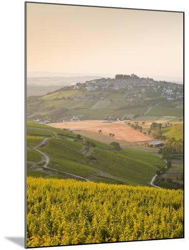 Dawn Light Starts to Fill the Skies Above the Village and Vineyards of Sanerre, Cher, Loire Valley,-Julian Elliott-Mounted Photographic Print
