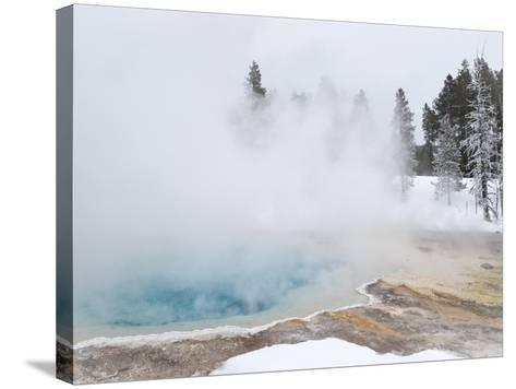 West Thumb Geyser Basin Winter Landscape with Geothermal Spring, Yellowstone National Park, UNESCO -Kimberly Walker-Stretched Canvas Print