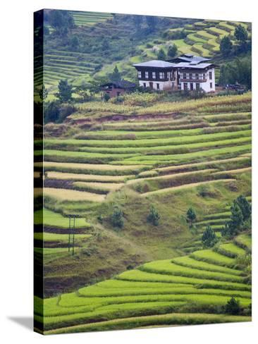 Village House and Rice Terraces in Metshina Village, Bhutan-Keren Su-Stretched Canvas Print