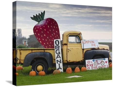 Route 1, Old Pickup Truck at Roadside Fruit Stand, Swanton, Central Coast, California, Usa-Walter Bibikow-Stretched Canvas Print