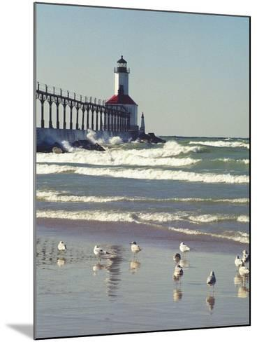 Indiana Dunes State Park, Indiana, Usa-Anna Miller-Mounted Photographic Print