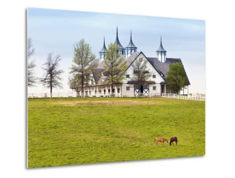Thoroughbred Horses Grazing, Manchester Horse Farm, Lexington, Kentucky, Usa-Adam Jones-Metal Print