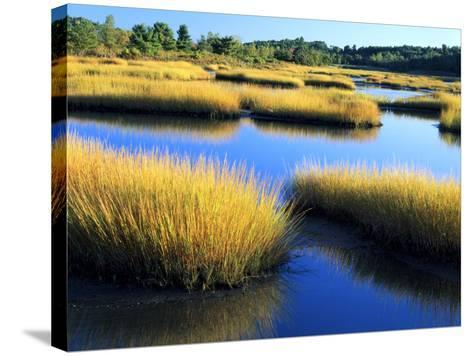 Salt Marsh at Sunrise, Estuary of New Meadow River in Early Autumn, Maine, Usa-Scott T^ Smith-Stretched Canvas Print
