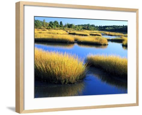 Salt Marsh at Sunrise, Estuary of New Meadow River in Early Autumn, Maine, Usa-Scott T^ Smith-Framed Art Print